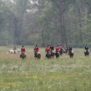 caccia a cavallo agriberroni
